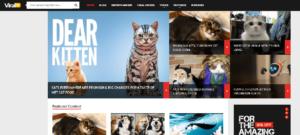 Viral Content WordPress Themes