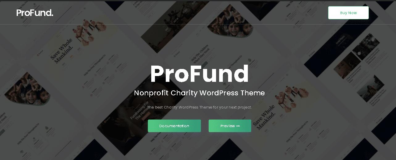 WordPress Non- Profit Themes