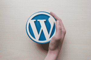 Is WordPress Good For Affiliate Marketing?