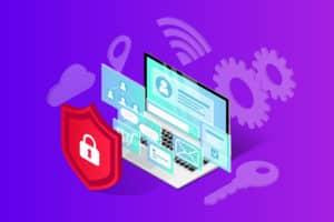 database security,Developing a Dynamic Platform