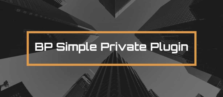 BP Simple Private Plugin Made with DesignCap